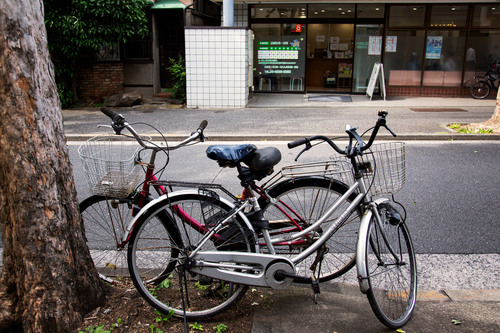 shinjyukuku-448小小.jpg