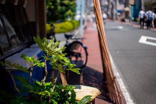 taitouku-09小小.jpg